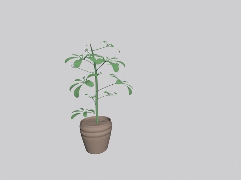 1.jpg Download free OBJ file Plant • 3D printer template, Zorana