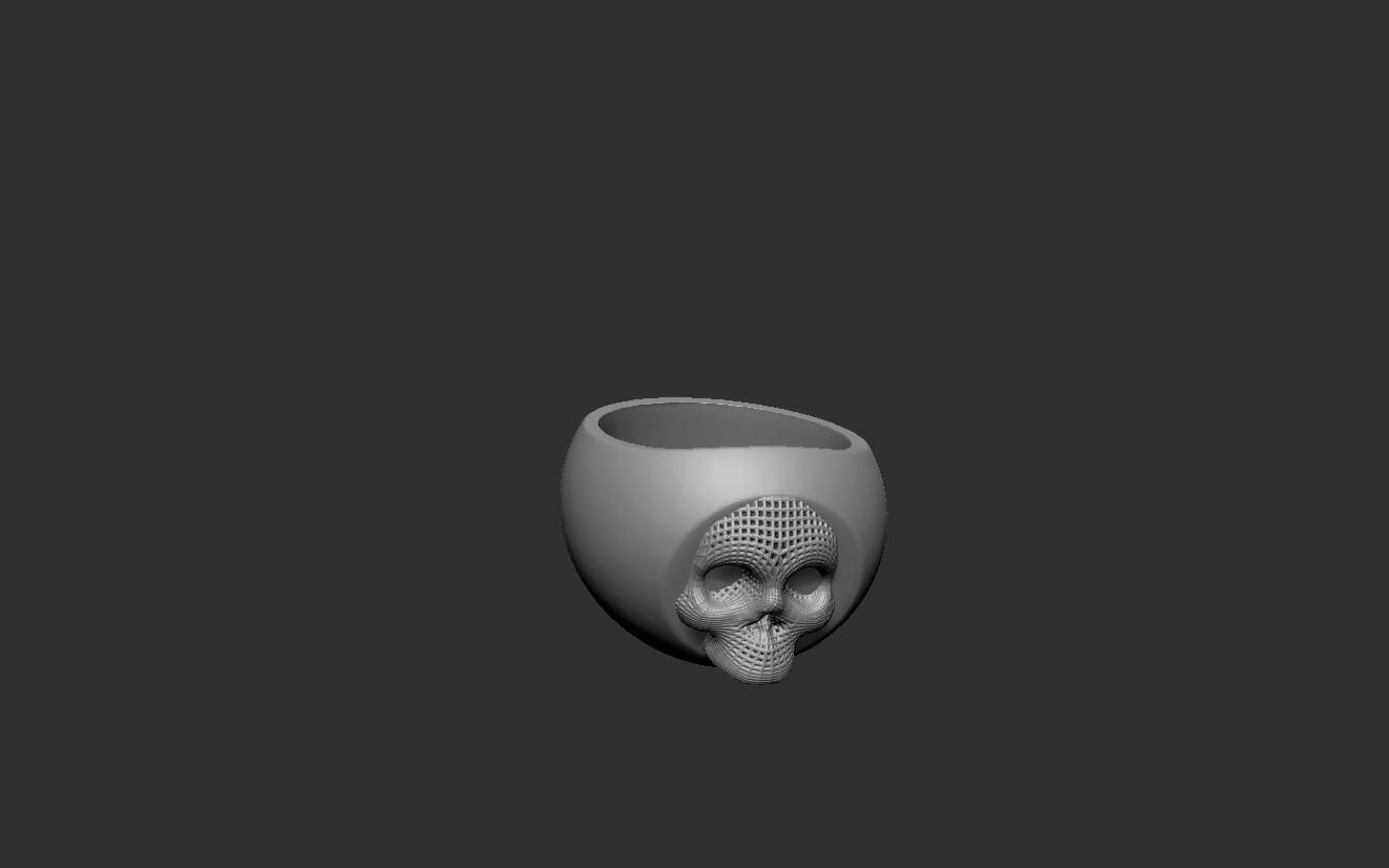 skullring.jpg Download free STL file Skullring • 3D print object, cchampjr