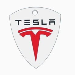 Free 3d model TESLA KEYCHAINS, Gophy
