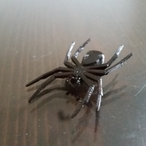 b22c63234f418f6f77a648954dcbca08_display_large.jpg Download free STL file House Spider Fixed • 3D printer template, Gophy