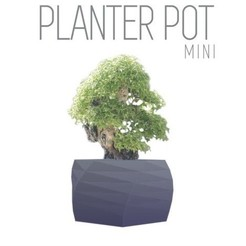 Free stl Parametric Plant Pot - 10cm, super thin walls, Gophy