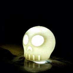 objet 3d gratuit Disperseur de flash Skully Phone, Gophy