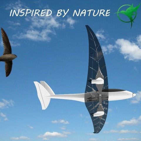 INSPIRED_BY_NATURE_2.jpg Download free STL file RC plane fuselage - Eclipson model Z • 3D printer design, Eclipson