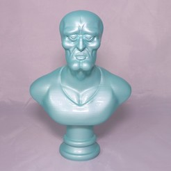 Download STL Handsome Squidward Bust, 3DPrintGeneral
