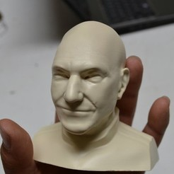 Télécharger modèle 3D Patrick Stewart Buste, 3DPrintGeneral
