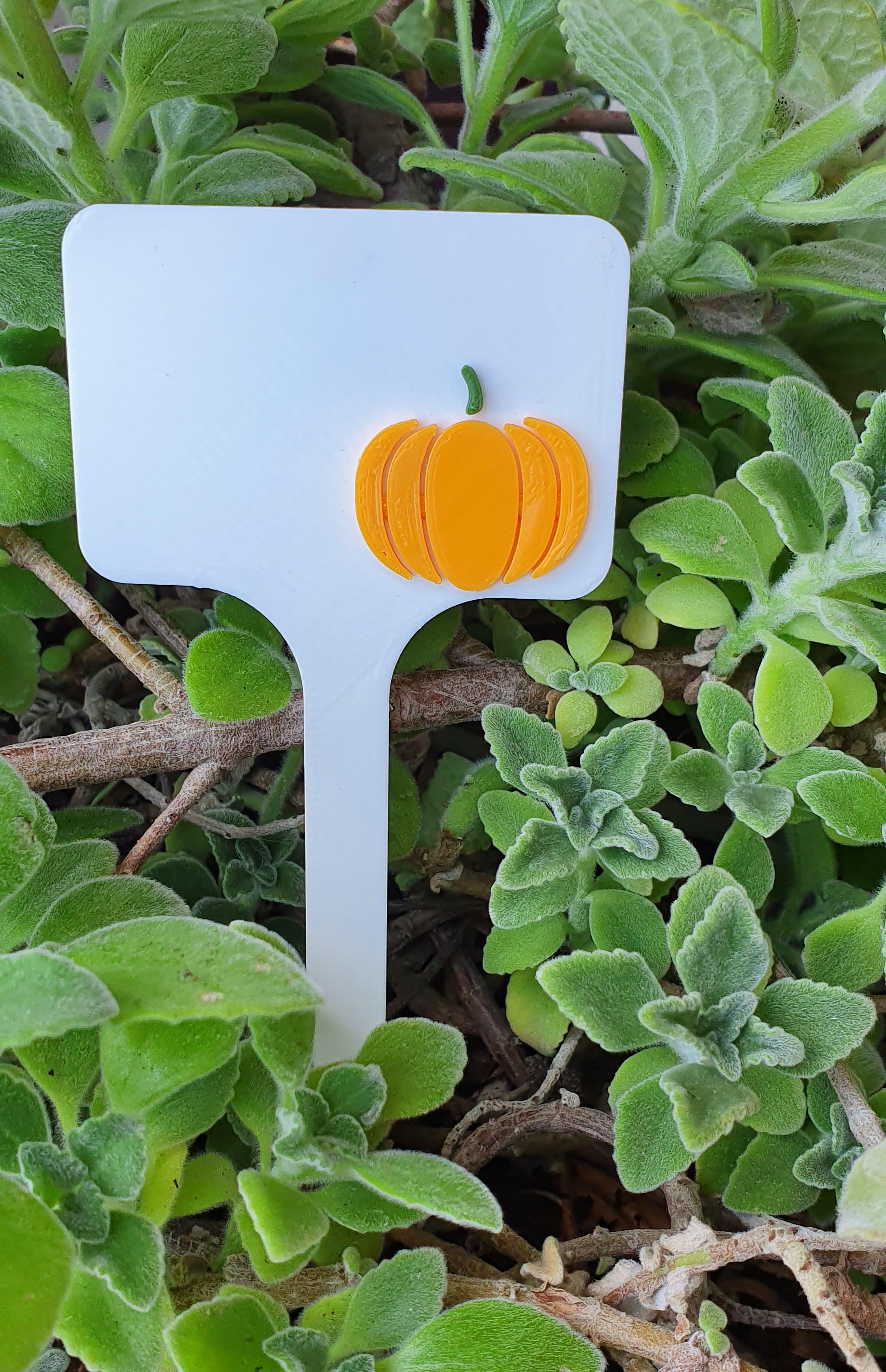 20190911_120044.jpg Télécharger fichier STL Signes de légumes - potiron • Modèle à imprimer en 3D, 3dlabaproca