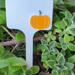 Download 3D printer designs Vegetables signs - pumpkin, Manfactory