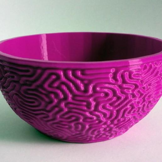 Télécharger fichier STL gratuit Cuvette Cerveau • Plan à imprimer en 3D, ferjerez3d