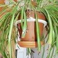 Download 3D printer designs Flower pot suspension, Kermit