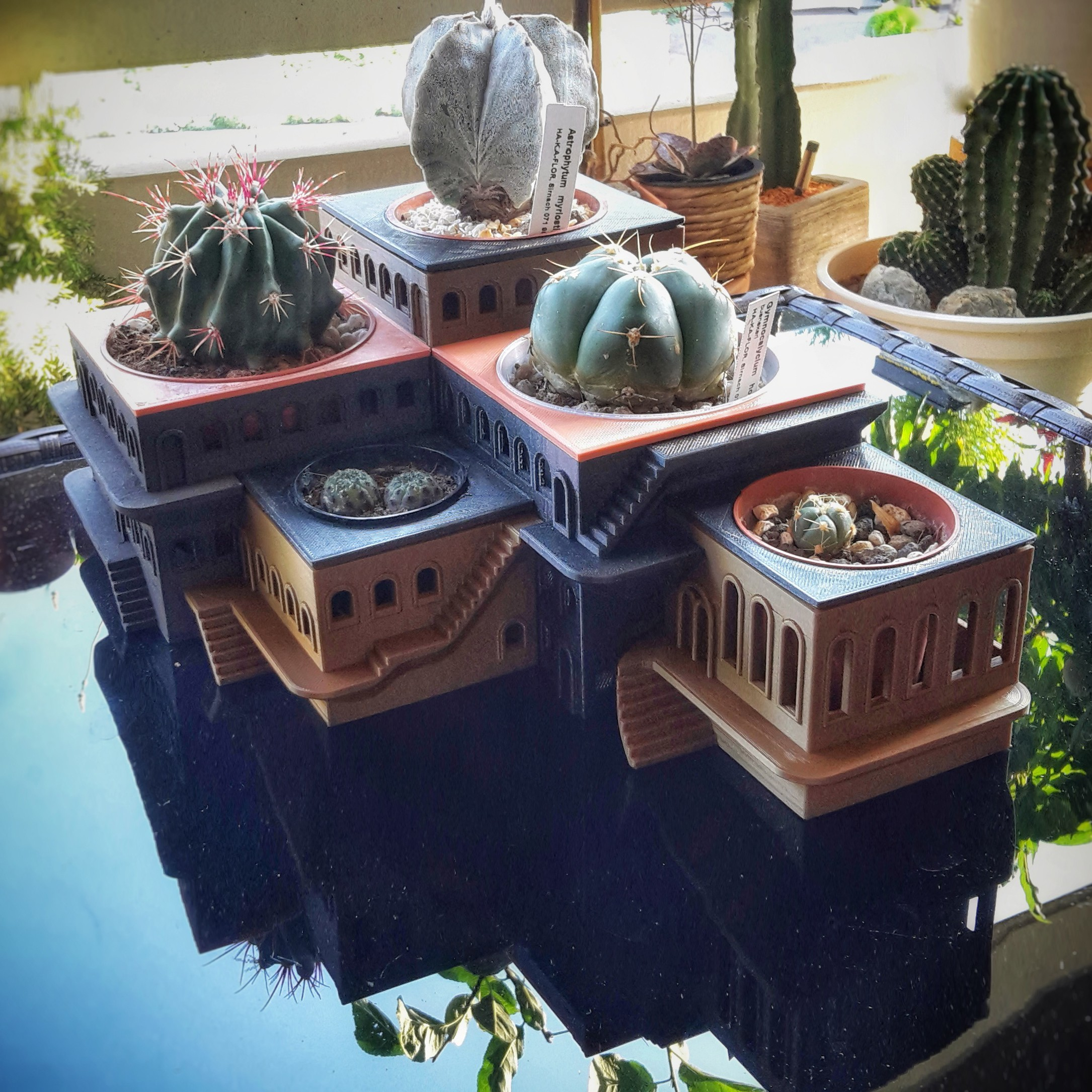 20180717_183105-01.jpg Download free STL file CactusHotel • Object to 3D print, XoGuSi