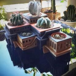 Descargar archivo 3D gratis CactusHotel, XoGuSi