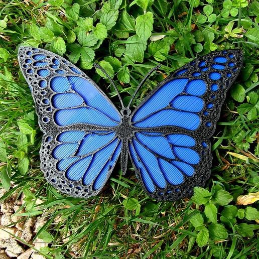 1.jpg Download free STL file Monarch Butterfly • 3D print design, oasisk