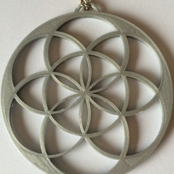 Descargar diseños 3D gratis Colgante Flor de Vida, oasisk