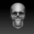 Free 3D printer designs Skull speed sculpt, Cryarm