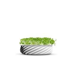 Télécharger plan imprimante 3D gatuit Petit pot de fleurs torsadées, dklopotek