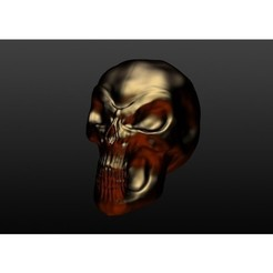 3D printing model Skull, YellowJacket