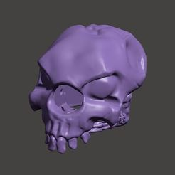 Capturar.JPG Download STL file Skull Toothpick Canopy - 3 inch and above • 3D print model, rodrigosclosa