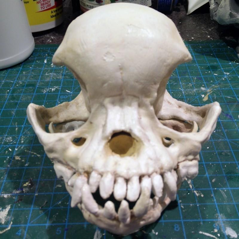 pug-skull-02.jpg Download free STL file Pug skull • 3D printing design, voxinaudita