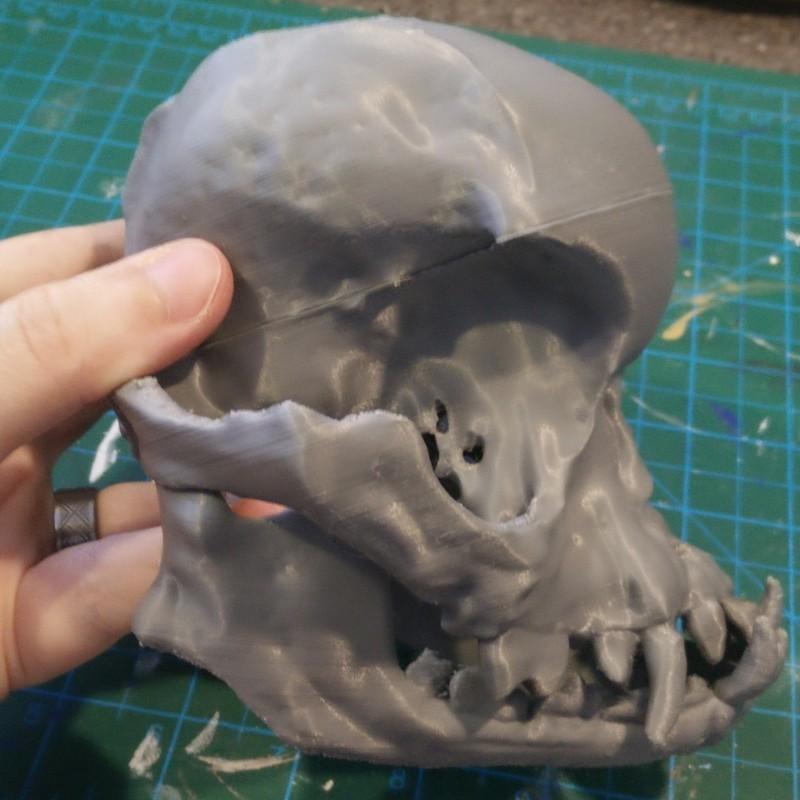 pug-skull-06.jpg Download free STL file Pug skull • 3D printing design, voxinaudita