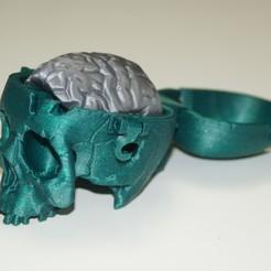 Plan imprimante 3D gatuit Boneheads: Boîte Crâne avec cerveau - via 3DKitbash.com, dante1