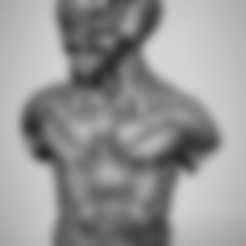 diseños 3d gratis Bio morph busto, duncanshadow