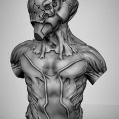 Free 3D print files Bio morph bust, duncanshadow