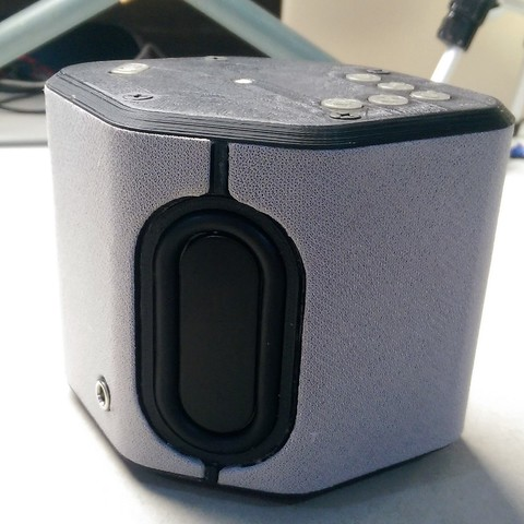 Free STL files 3D Printed Bluetooth Speaker with Multi-Directional Stereo Sound, Ahmsville