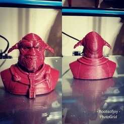 Free STL file The Fifth Element Mangalore Bust (50mb), contacrootsofjoy