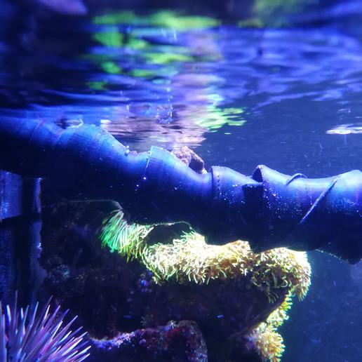 Download free STL files Aquarium Flow, herve3