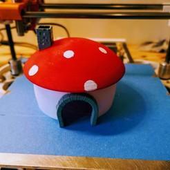 P1140265.JPG Télécharger fichier STL maison champignon pour souris • Design imprimable en 3D, Ant-103