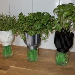 Free STL Selfwatering planter, Jakwit