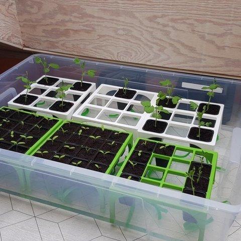 Free 3D printer files Selfwatering plantstand, Jakwit