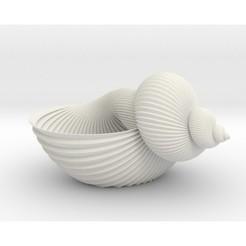 shellpot.jpg Télécharger fichier STL Jardinière de coquillages • Design pour imprimante 3D, iagoroddop
