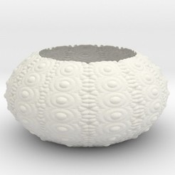 Descargar modelos 3D para imprimir Sea Urchin Bowl, iagoroddop