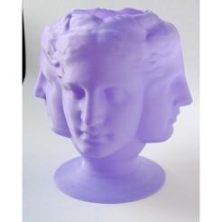 venusvase.jpg Download STL file TetraVenus Vase • 3D printing template, iagoroddop