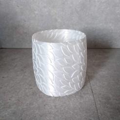 DSC_2424.JPG Télécharger fichier STL Pot de fleurs  • Objet pour imprimante 3D, selinav42