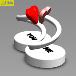 2020-01-08_155540.png Download STL file INFINITY LOVE • 3D print model, Tum