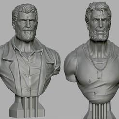 Descargar modelo 3D gratis busto logan, cobal