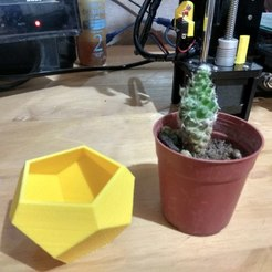 IMG_20180329_194140_HDR.jpg Download free STL file mini flowerpot 2 • 3D printing object, pablocorezzola