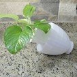3D print model Greek Jar plant pot, 3dprintlines