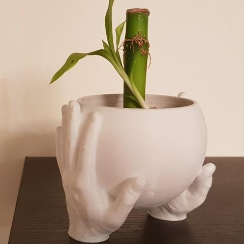 3D printer models Carrying Hands plant pot, 3dprintlines