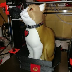 3D printing model Schrodinky: British Shorthair Cat in a Box – 3D Printable, Multi Part Model - MULTI EXTRUSION PACKAGE, PJR_slo
