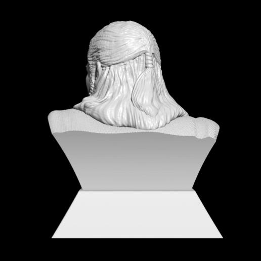 12.png Télécharger fichier STL Qui-Gon Jinn Bust • Objet pour imprimante 3D, BODY3D