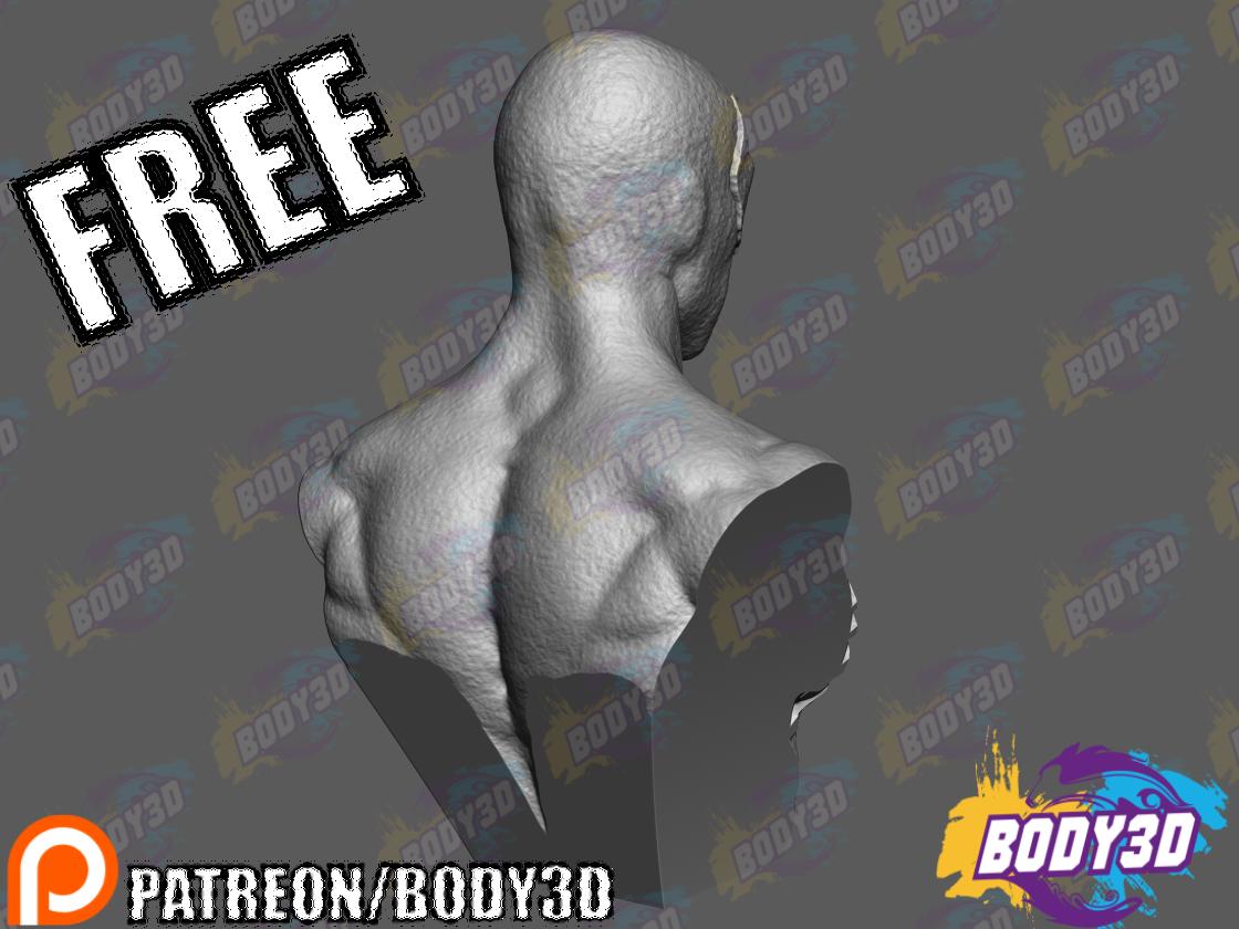 ven4.png Télécharger fichier STL gratuit Buste d'un Spiderman venimeux • Design pour imprimante 3D, BODY3D