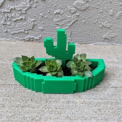 Download free 3D printing templates Cactus Planter or Jewelry Holder, mark579