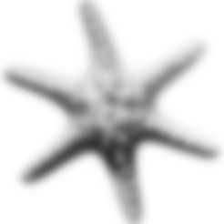 Horned_Sea_Star.stl Download free STL file Horned Sea Star • 3D printable model, ThreeDScans