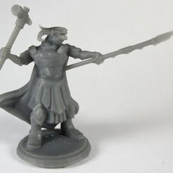 Free 3d print files Dragonborn Warlord (multiple poses), stockto