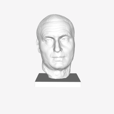 Download free 3D printing files Unnamed Bust at The Louvre, Paris, Louvre