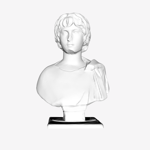Download free STL file Young Gaul at The Louvre, Paris • 3D printing object, Louvre
