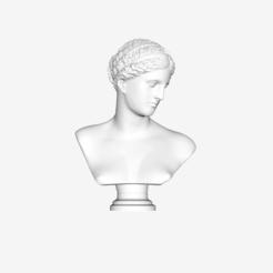 Free 3D print files Bust of Venus of Arles at The Louvre, Paris, Louvre